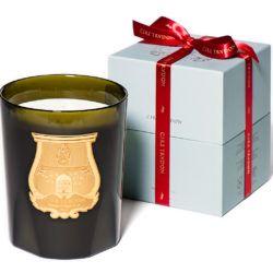 Cire Trudon Great Candle + box HD